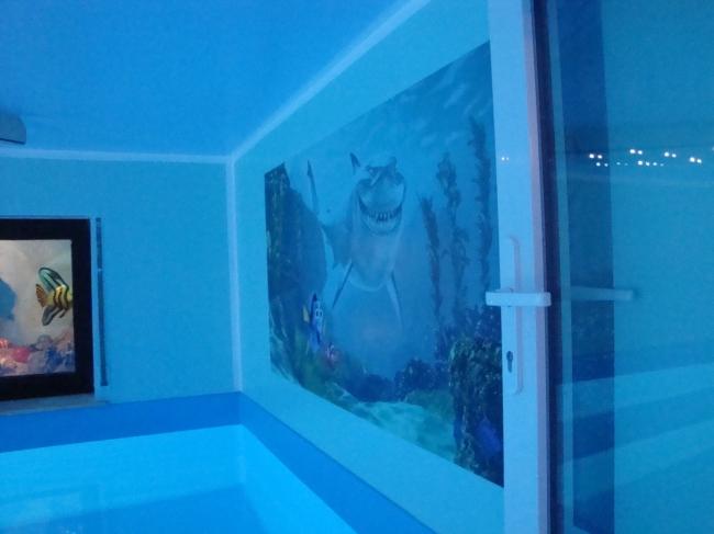 gesundheits-hallenbad-wiesbaden-dauber-schwimmanlagen-haifisch