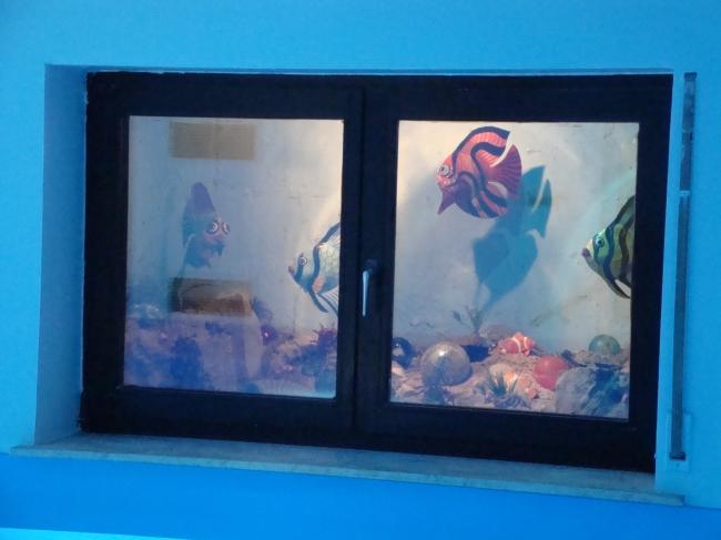 gesundheits-hallenbad-wiesbaden-dauber-schwimmanlagen-aquarium